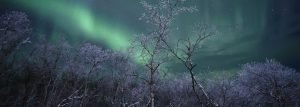 Top 10 things to do in Abisko, Swedish Lapland, Sweden